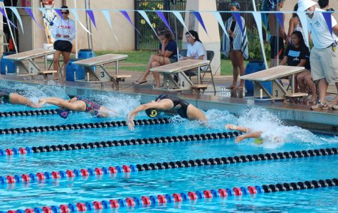 Swim team finishes roaring season, top five in OIA championships