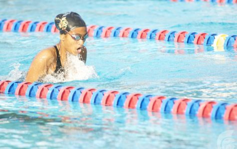 Swim Team Victorious At OIA Championships: Qualifying for States